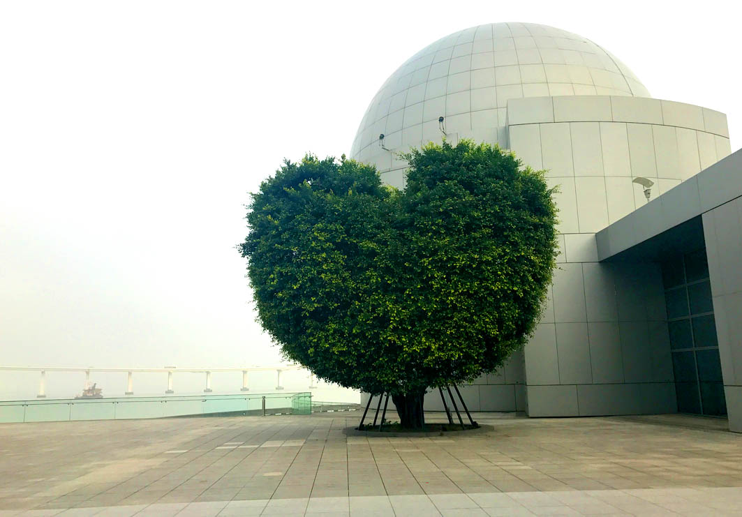 Macao Science Center: View